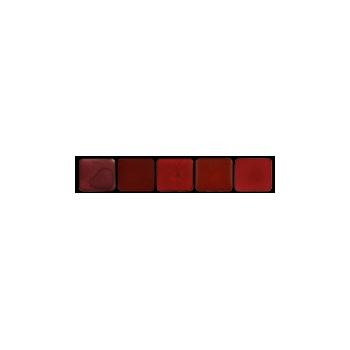 Palette rouges à lèvres minéral Eugénie Prahy cls01 - Couleurs